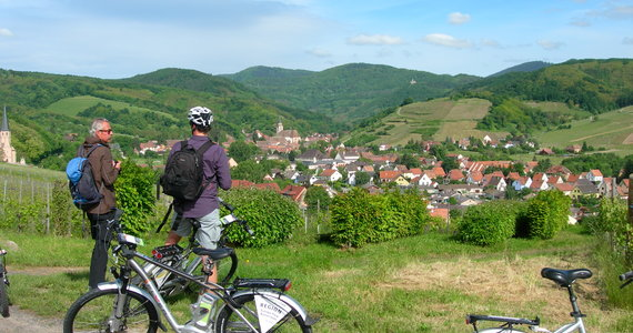 wine tours in Alsace © C. Fleith