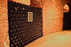 Piedmont wine tour bottles-fontanafredda