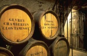 Dijon wine holiday
