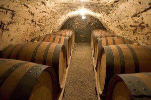 Rhone wine tours- Credits L.PASCALE ADT 26 Rhone