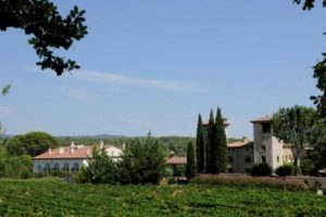 Provence Wine Tour Chateau de Berne