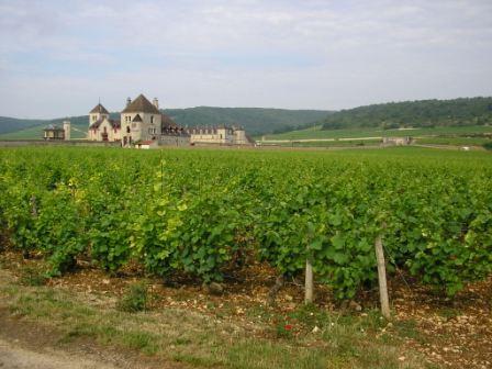 Beaune Wine Tour- Clos de Vougeot