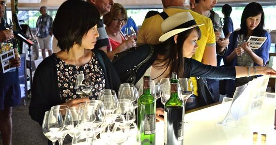 Bordeaux wines © JM. Destang