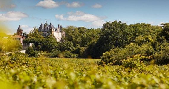 Dijon wine holiday - credits Dom_Devillard_041