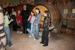 Wine tour in the Rhone