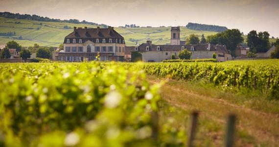 Burgundy Wine Tours Le Château de Pommard - Beaune Tourisme © Château de Pommard