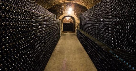 Champagne the wines ® Carmen Moya (29)