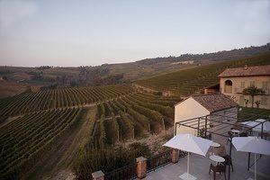 Piedmont wine tour palas-cerequio-vineyards