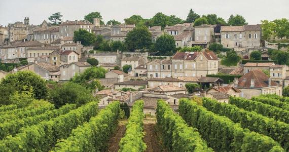 Bordeaux wine tour - Credit Vincent Bengold