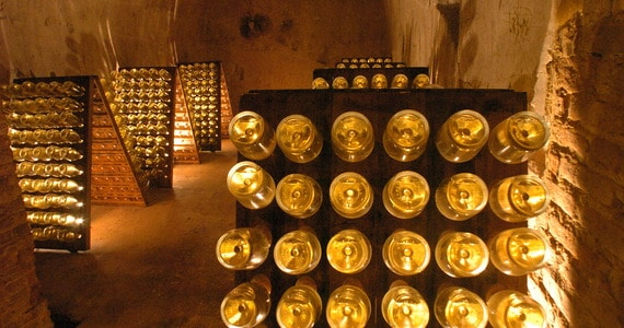 Champagne Tour - Ruinart Bottles in Cellar