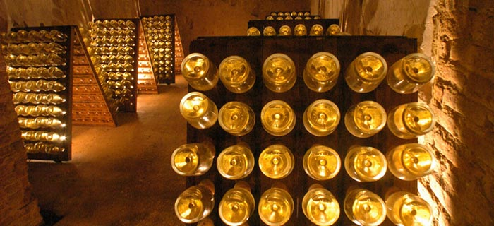 Ruinart Champagne bottles in their cellars