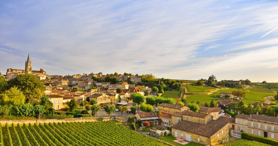 Bordeaux Wine Tour- Credits HEURISKO