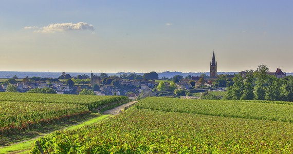 Bordeaux - Credits Office de Tourisme Saint Emilion and Steve LECLECH