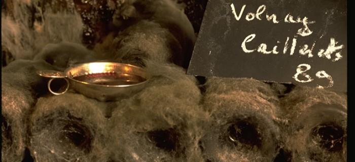Tastevin in a cellar - SCHWARTZ Jean-Marc