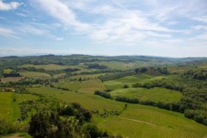 Chianti wine tour tuscany-vineyards-2-credits-florence-town