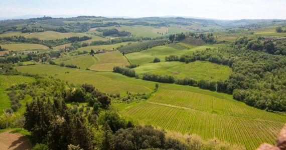 Tuscany Wine Tour