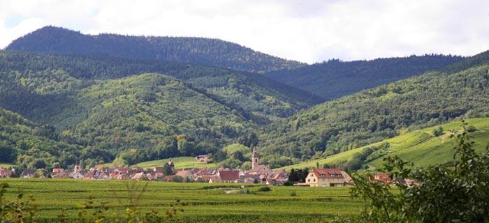 Riquewihr wine tasting tour