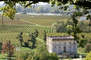 Bordeaux wine tasting - Olivier Boisseau