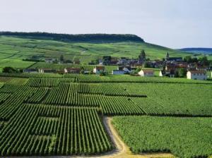 Epernay Champagne Tour©JK Gräber (2)