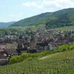 Riquewihr Wine Tour - Credits Office de Tourisme du Pays de Ribeauvillé et Riquewihr