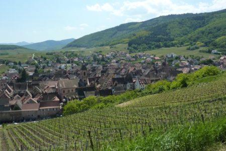 Riquewihr wine tour - Credits Alsace