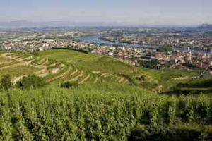 Rhone wine tour: TAINL'HERMITAG - EL. Pascale – ADT Drôme