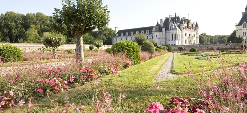 Loire Valley Wine Tours - © 2008 - Stevens Frémont - ADT Touraine