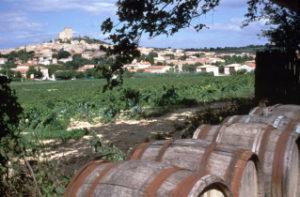 Lore wine tour©JL.Seille.coll.cdt84