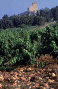 Loire wine tour©D_LEFRANC_cdt84