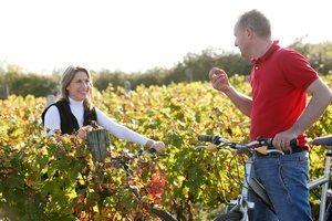 Ballade_en_vélo_dans_les_vignes_Stevens_Frémont
