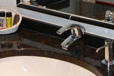 Henry II- bathroom
