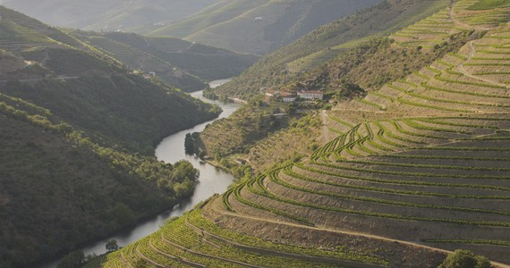 Porto area - credits Grapes Hospitality - The Fladgate Partnership