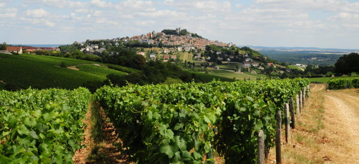 Sancerre vineyards- © photo Patrice Régnier (13)