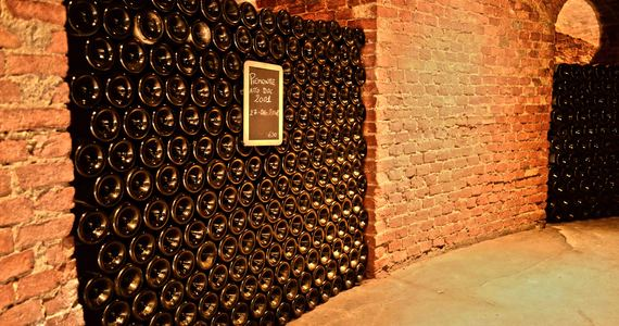 turin wine tour - nicchie_alta_langa