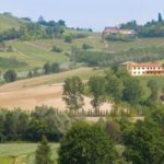 Piedmont wine tasting- Turismo Turino