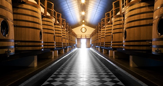 Luxury Bordeaux Wine Tour