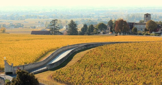 Bordeaux First Growths- Credits Office de Tourisme de Saint-Emilion