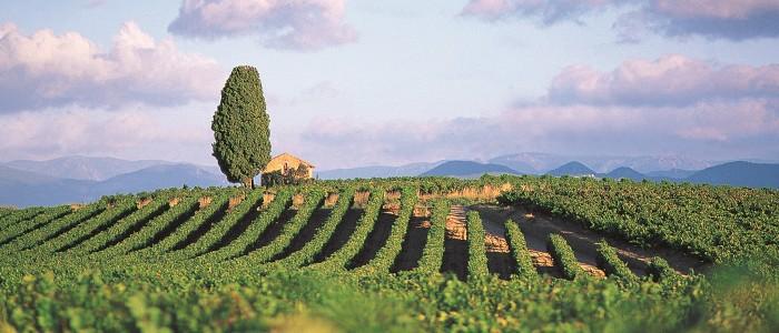 Travel to Languedoc- Credits Herault-P