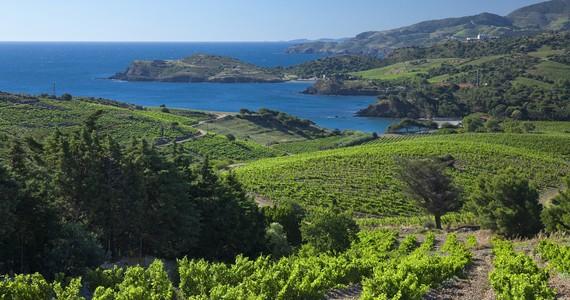 Languedoc holidays- Credits PaulPalau