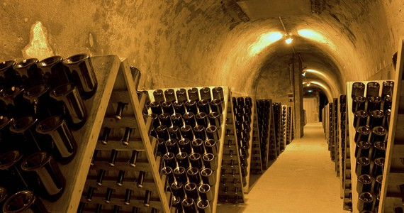 Paris Wine Tour- credits Carmen Moya