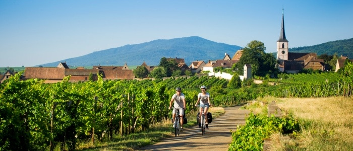 Wine and Beyond Cycling in the Alsace Vineyards- Credits Infra and ADT Alsace