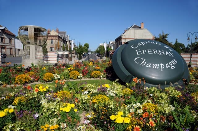 Simply Epernay vineyard tour ©C. Manquillet
