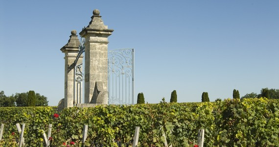 Bordeaux Day Tour - Credits Anne Lanta