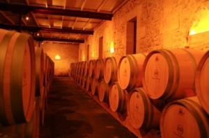 Medoc Wine Tour- Credits Y. Serrano and CDT Gironde
