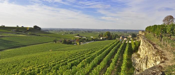 Bordeaux trip- Credits Heurisko