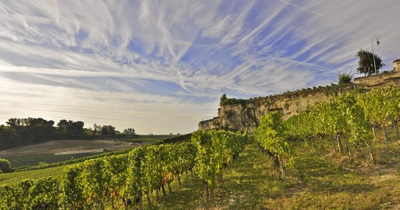 France wine tour- Credits Heurisko
