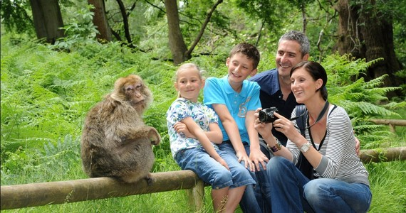 Alsace wine holiday © Montagne des Singes