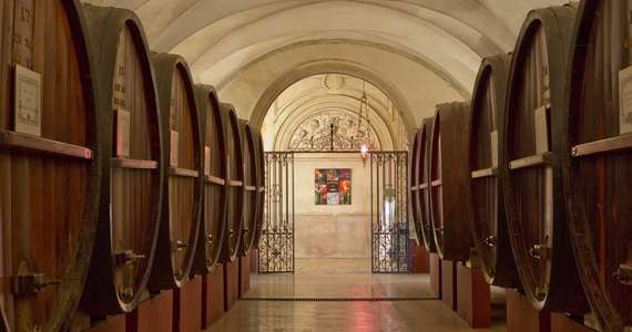 Ultimate French wine tour Credits- Patriarche Wine Company