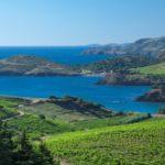 Ultimate French Wine Tour - credit Pail Palau