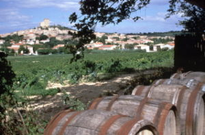Ultimate French Wine Tour - JL Seille